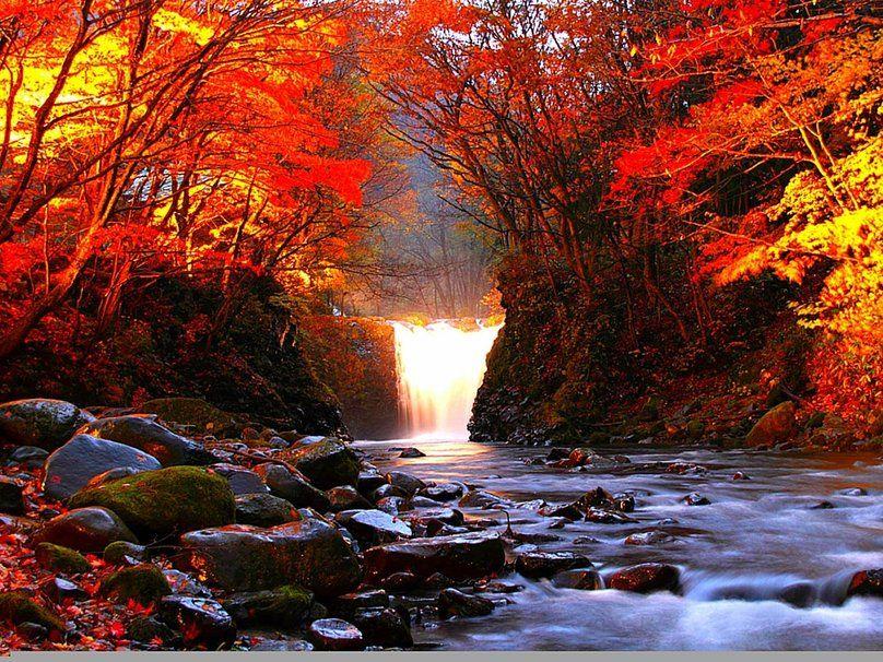 Autumn River Vektor Forwallpaper Com Autumn Toamna Osz