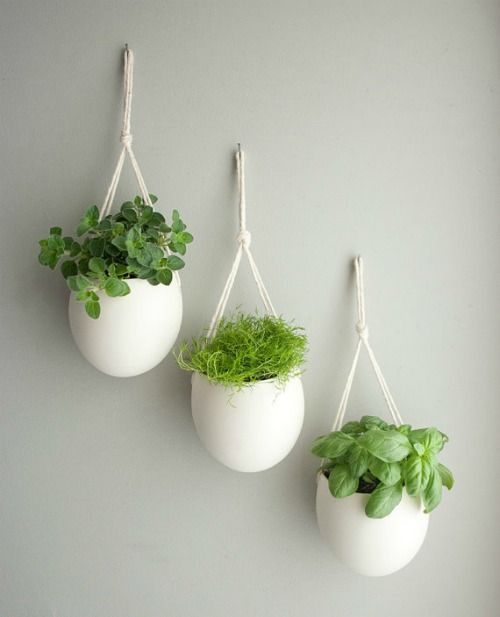 Medium Porcelain And Cotton Rope Hanging Planter By Farrahsit Maybe For My Kitchen