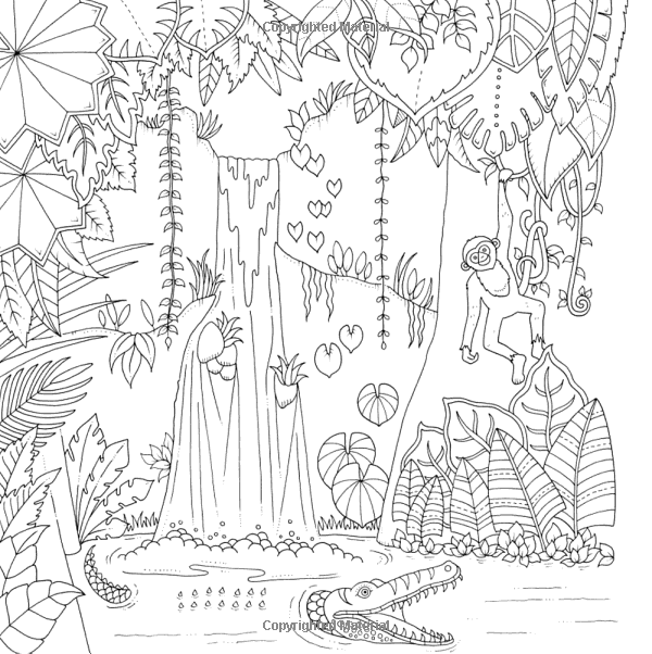 Amazon Magical Jungle An Inky Expedition And Coloring Book For
