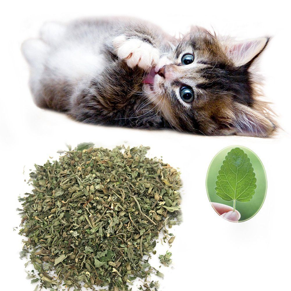 More Care Catnip Cat Mint Cat Snacks Catnip Herb 10g Be Sure To Check Out This Awesome Product This Is An Amazon Dried Catnip Cat Snacks Organic Catnip
