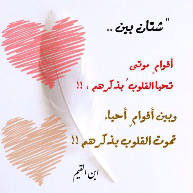 Desertrose ابن القيم Arabic Quotes Islam Facts Islam Beliefs