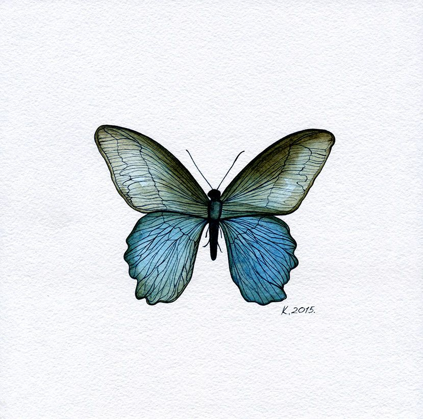 Butterfly, blue, black, insects, Quick sketch, Watercolor Original Painting Art #Realism    Natalia Komisarova   NatalieStorePainting     You can also find me on:    EBAY: http://www.ebay.com/usr/natalie_komisarova.art    ETSY: https://www.etsy.com/shop/NatalieStorePainting    FACEBOOK: https://www.facebook.com/komisarova.art    #NataliePaintings #Natalie #Artist