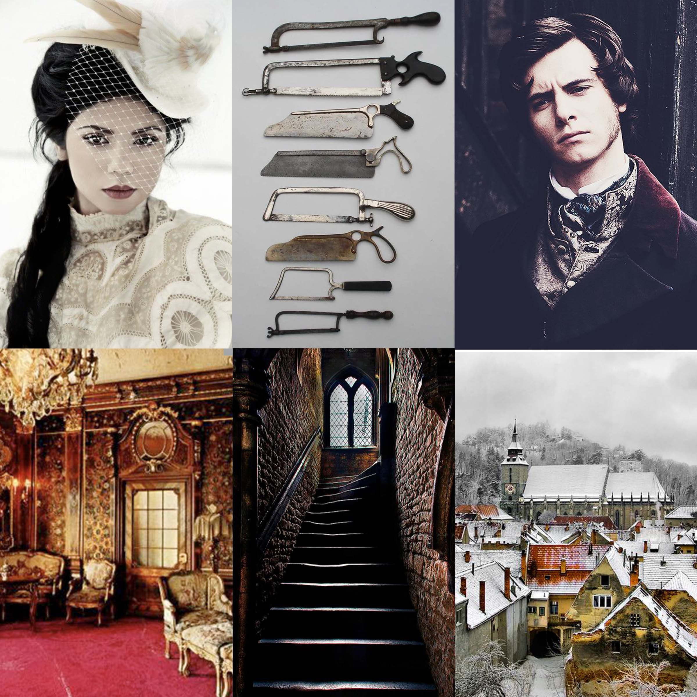 Hunting Prince Dracula by Kerri Maniscalco {@kerrimaniscalco}  #stalkingjacktheripper | Dracula book, Dracula, Book characters