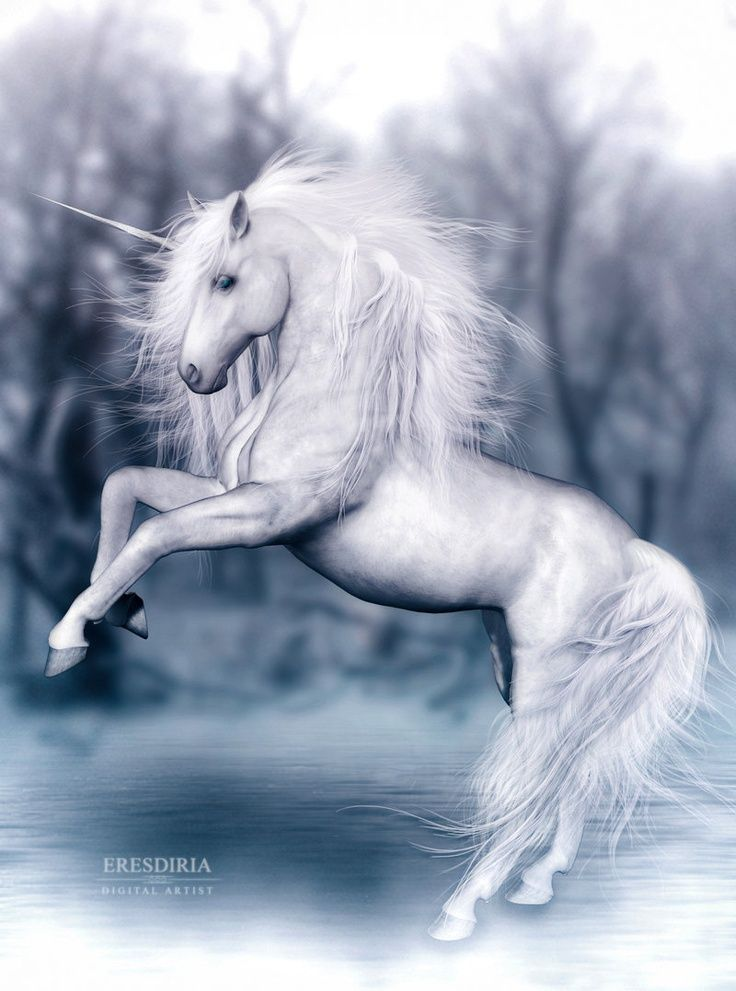 Unicornios By F Resdiria White Unicorn Myth Legend Unicorns