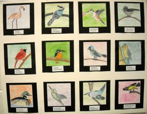 6th Grade artwork & curriculum, middle school art projects