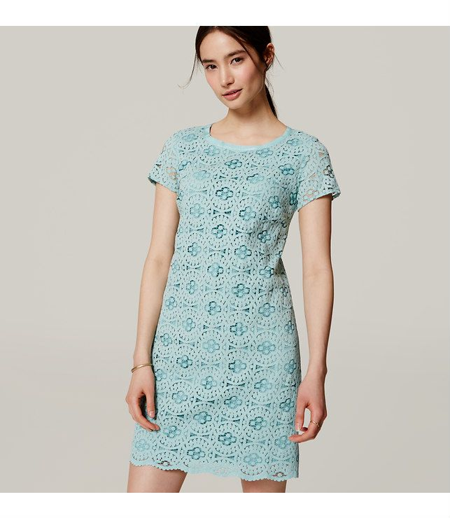 """The balance of romantic lace and an impeccable, mod-chic silhouette make this shift dress a necessity. Banded round neck. Sheer short sleeves. Scalloped hem. Back zip. Lined. 19 1/2"""" from natural waist."""