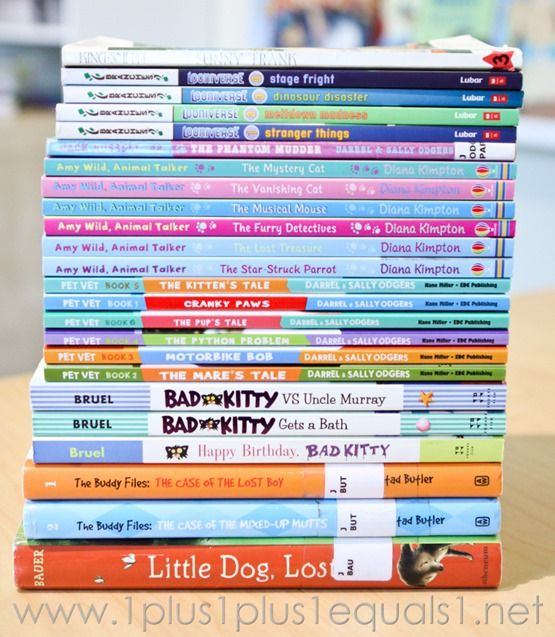 2nd Grade Reading ~ A Fun Year for Us! | Classroom Ideas