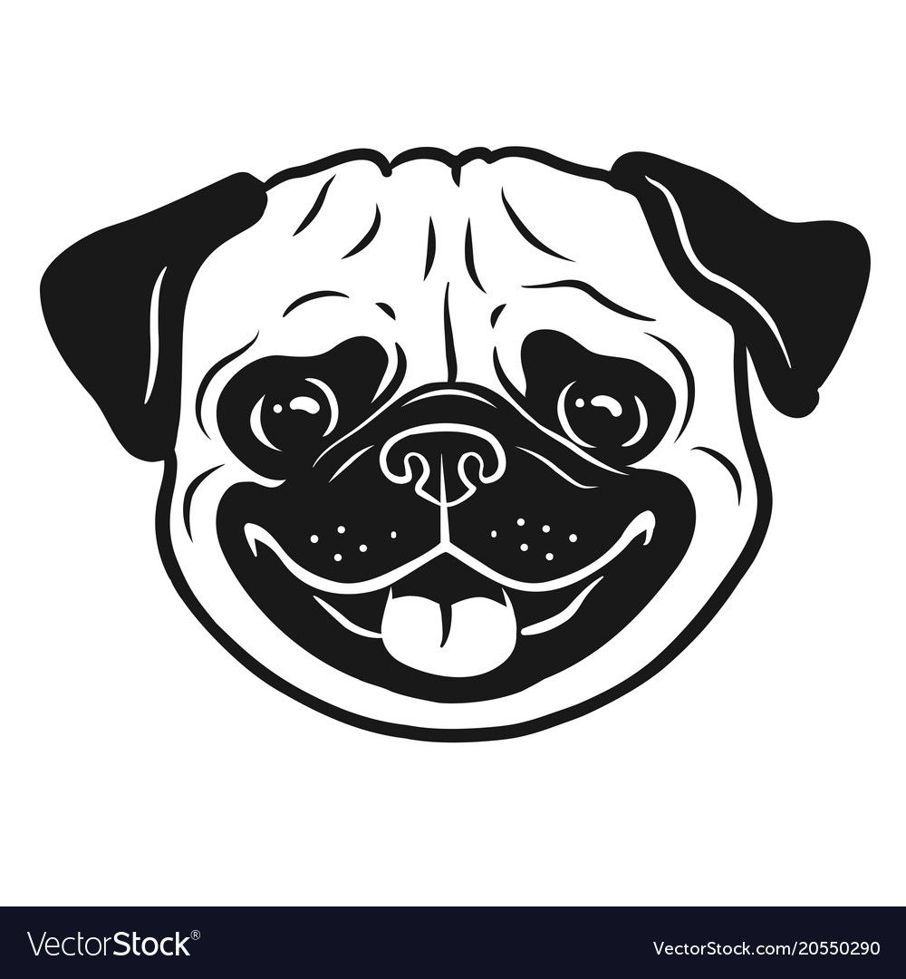 How To Draw A Pug Dog Face Step By Step Youtube Dog Face