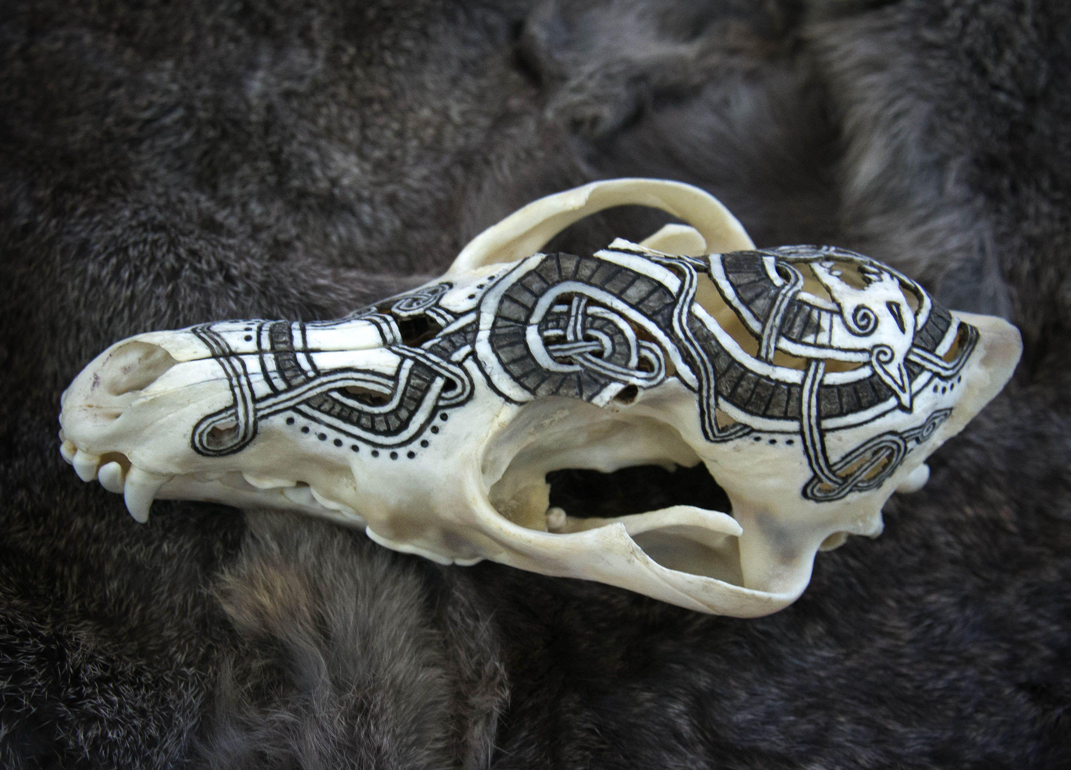 Carved Coyote Skull Skull Carving Skull Painting Skull