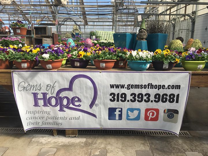 Daffodils are here!  Come out and enjoy the warm sun in the greenhouse and support a great cause!  #gemsofhope #culversgarden #spring #daffodils