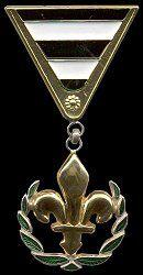 Details about  /ARMY REPUBLIC OF BOSNIA HERCEGOVINA golden lily ORIGINAL exemplar badge