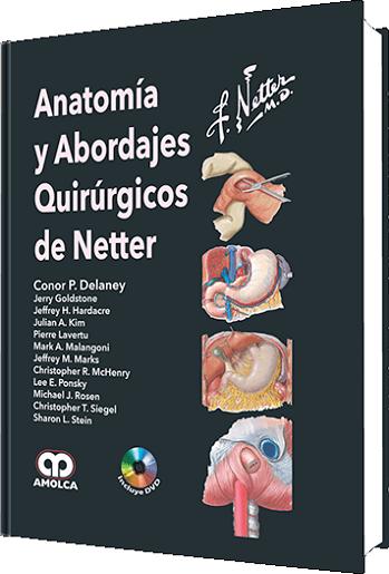 Anatomía y Abordajes Quirúrgicos de Netter #Cirugia #Anatomia ...