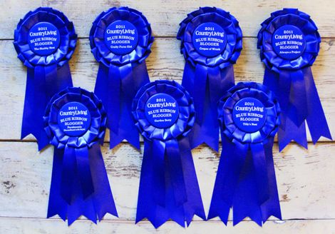 DIY Horse show ribbons, done EASy! No sew   just use a