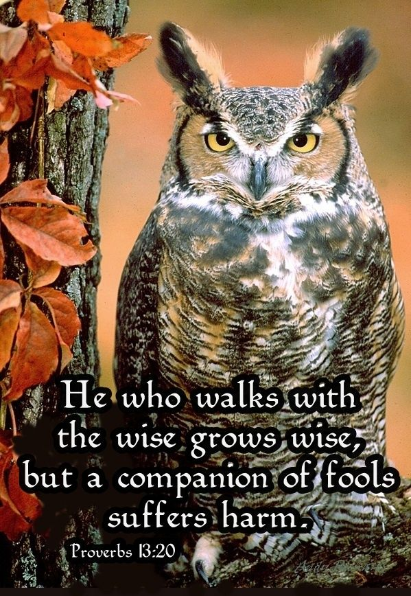 Proverbs  He Who Walks With Wise Men Will Be Wise
