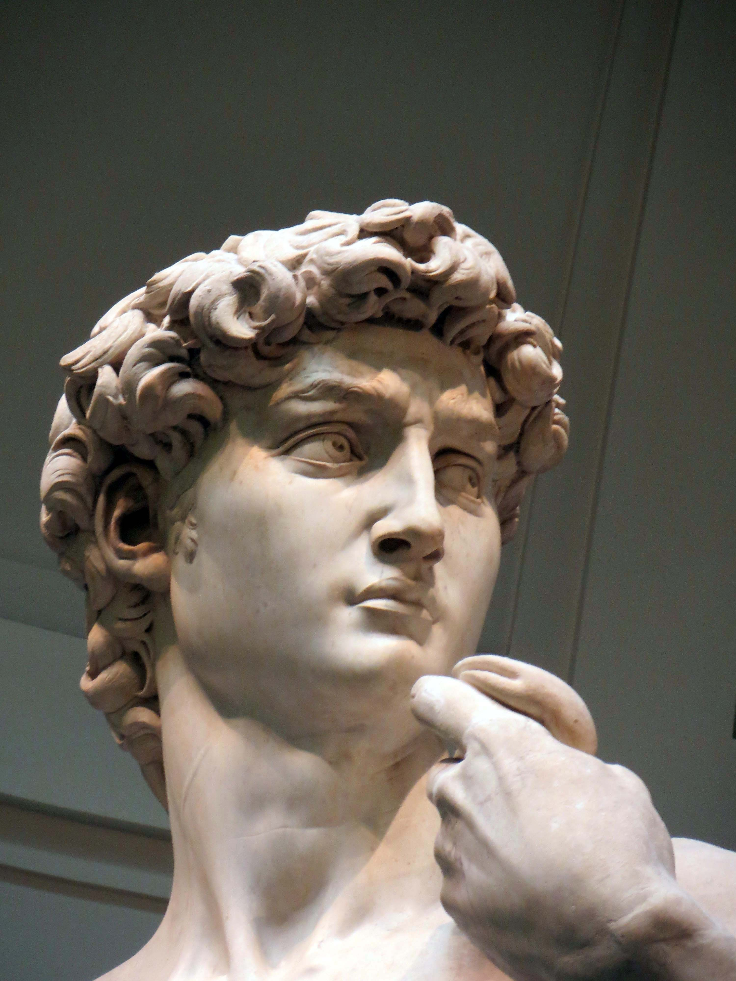 David's head from the original statue by Michelangelo