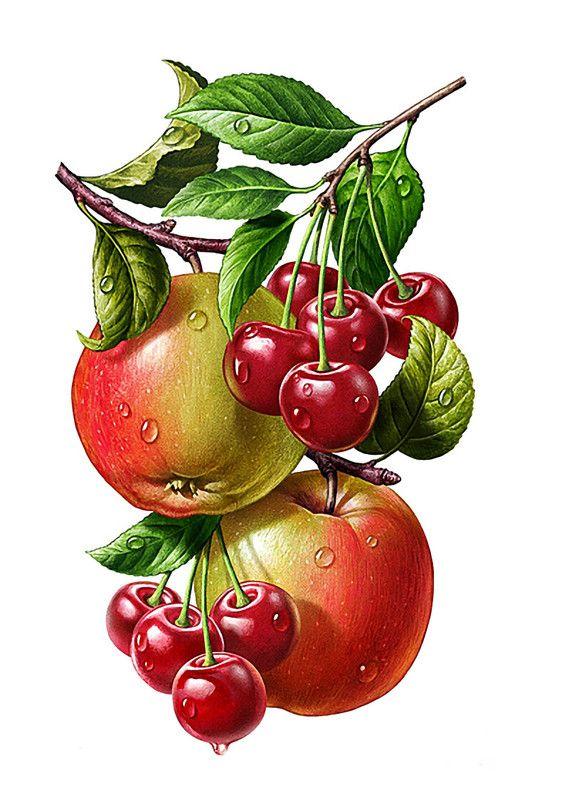 Fruit et legumes modele - Dessin de legumes ...