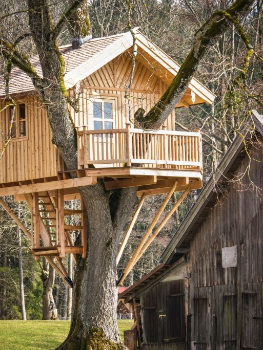 37 Pictures Of Super Fun Kids Tree Houses Tree House Plans Tree House Diy Beautiful Tree Houses