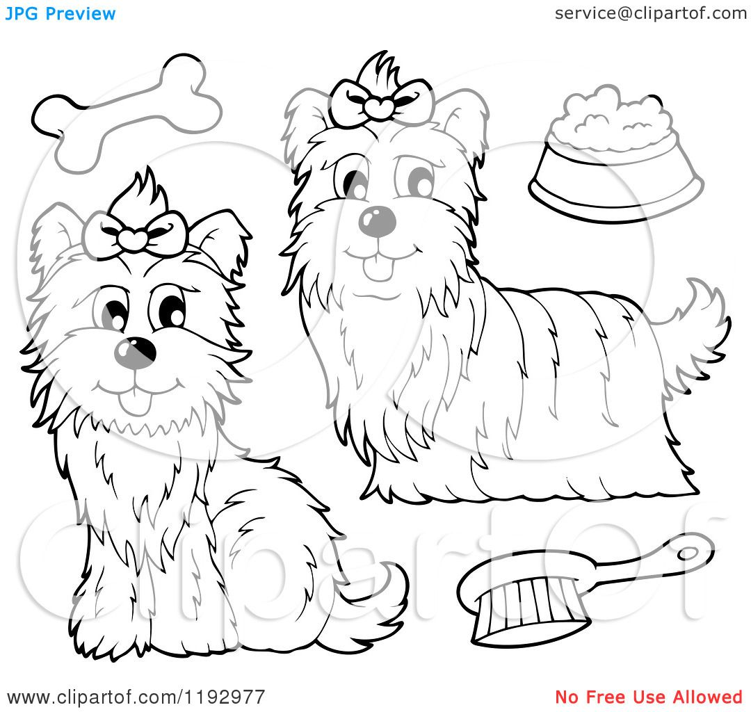 Cartoon Of Black And White Yorkie Dogs With A Brush Bone And Food Unicorn Coloring Pages Coloring Books Illustration [ 1024 x 1080 Pixel ]