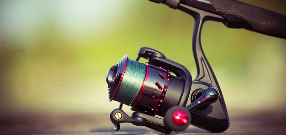 Learn How Does A Spinning Reel Work In 2021 In 2021 Spinning Reels Spinning Fishing Rod