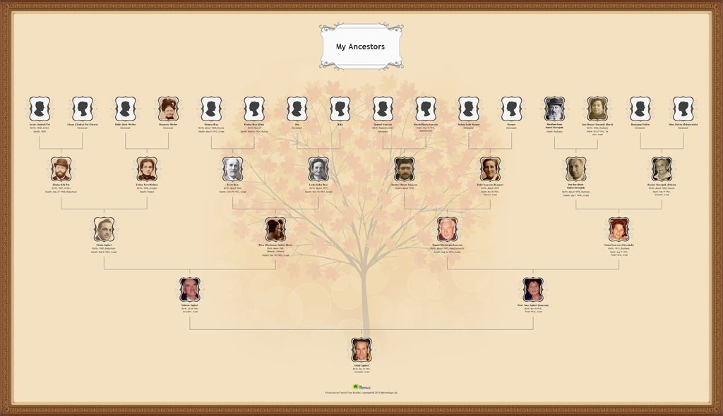 a more traditional but classy genealogy wall chart genealogy and