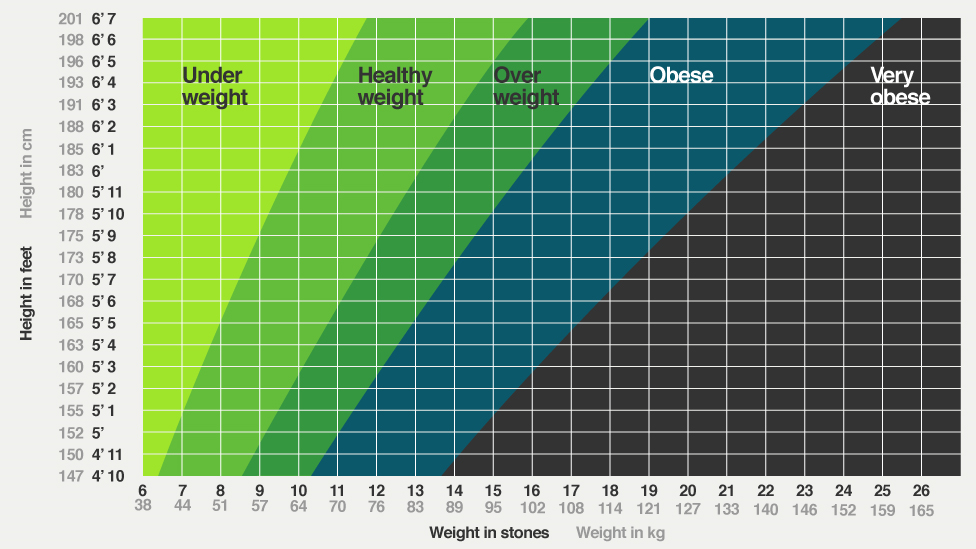 Fit And Fat Is Bmi The Best Way To Tell If Youre Healthy 135