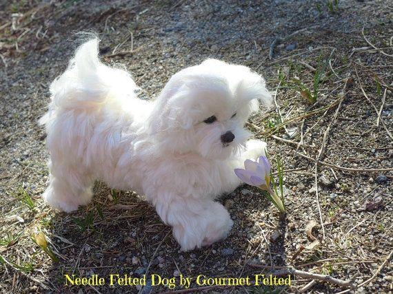 Needle Felted Animal / Needle Felted Dog / Custom Pet Portrait  / OOAK handmade Gift idea / Art Doll / example Maltese / Extra Large shown