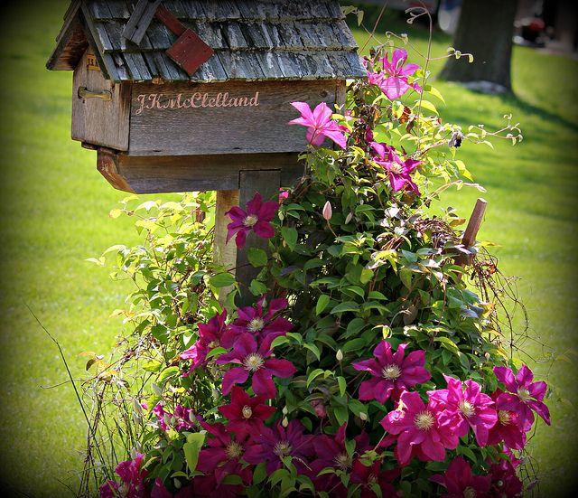 Beautiful Mailbox   Beautiful mailbox, Mailbox landscaping, Mailbox garden