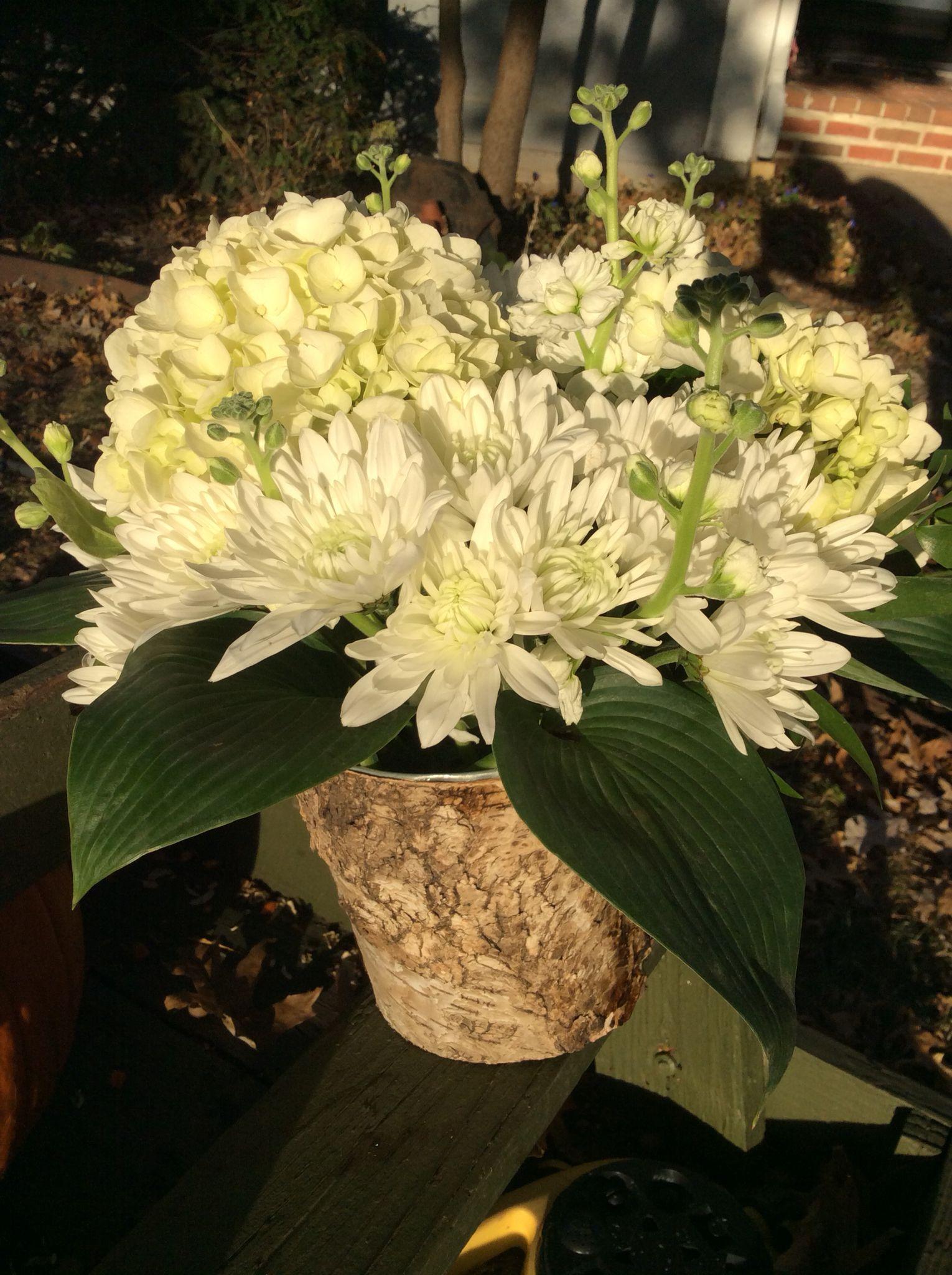 Centerpiece ideas Floral design, Centerpieces, Plants
