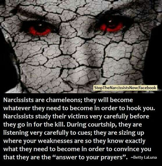 Image result for narcissist get you hooked