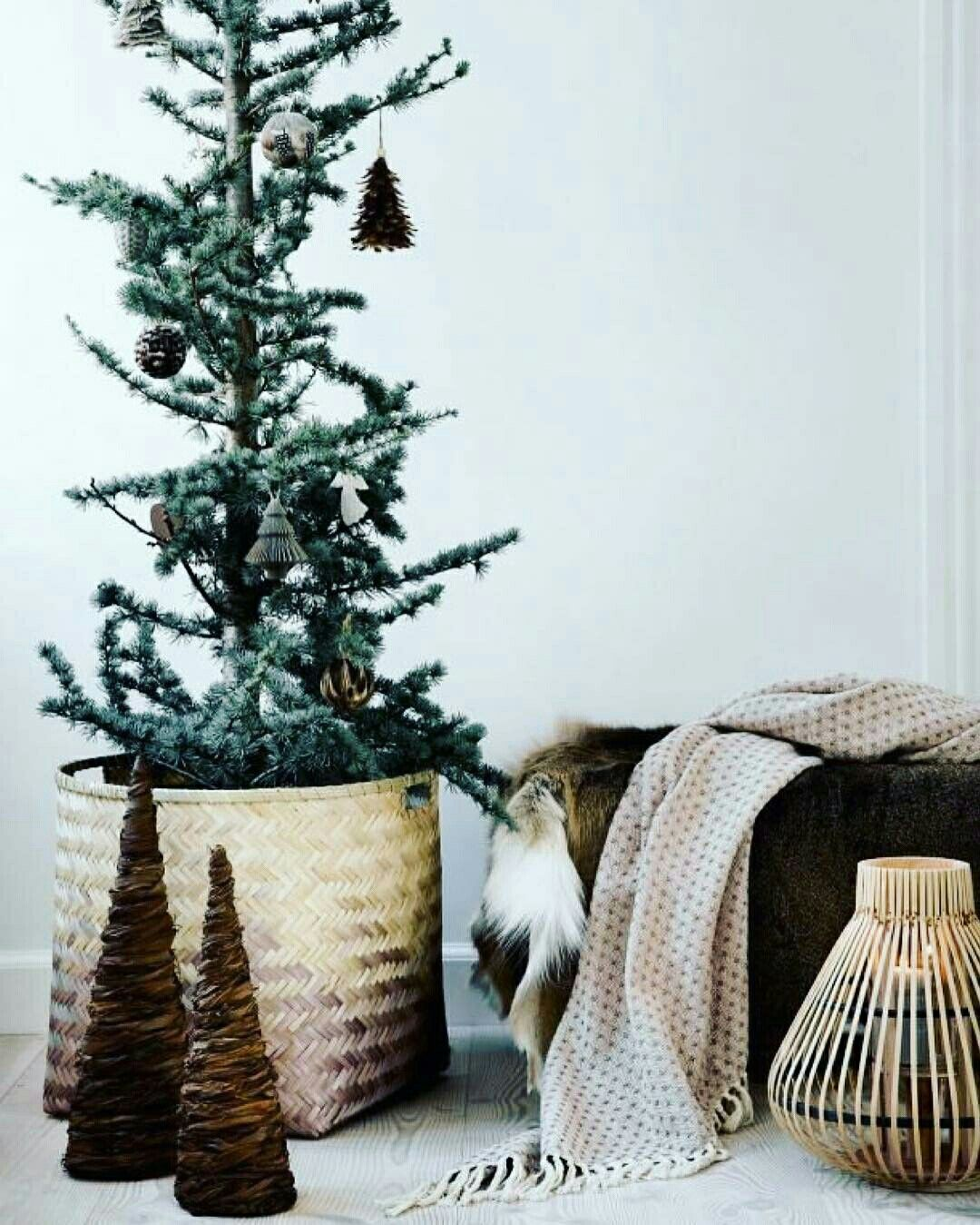 Natural Christmas Tree @aquellespetitescosesbcn