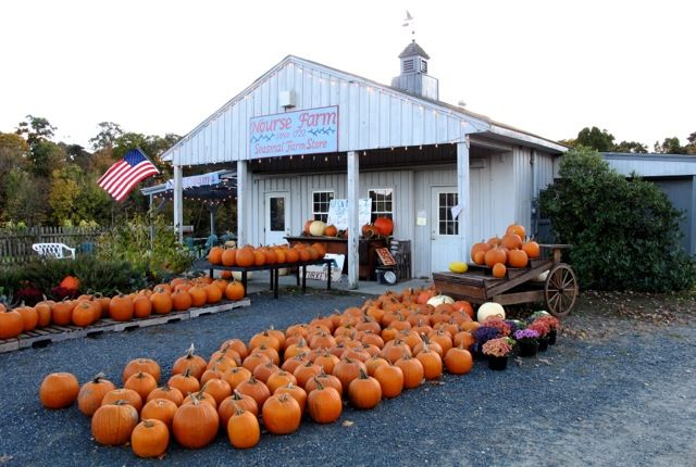 Nourse Farm, Westborough, MA