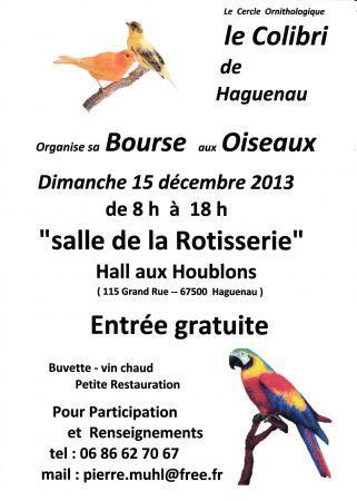 Bourse aux oiseaux. Le dimanche 15 décembre 2013 à haguenau.