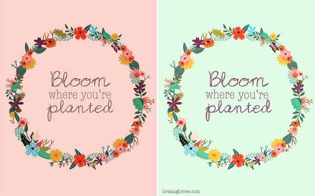 Bloom Where You Are Planted Printables Live Laugh Rowe Bloom Where Youre Planted Bloom Where You Are Planted Bloom Quotes