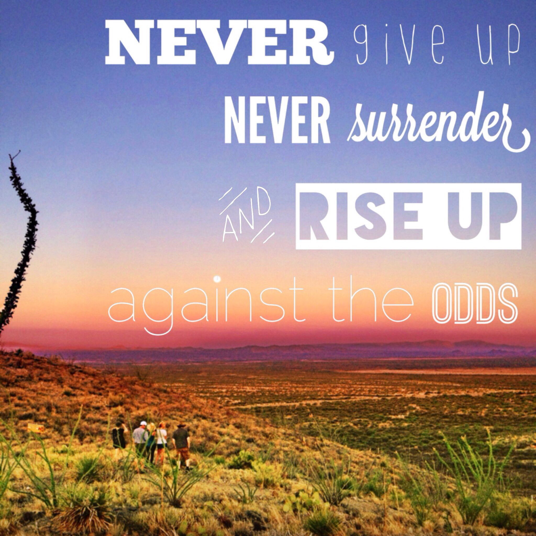 Quotes, Never Give Up