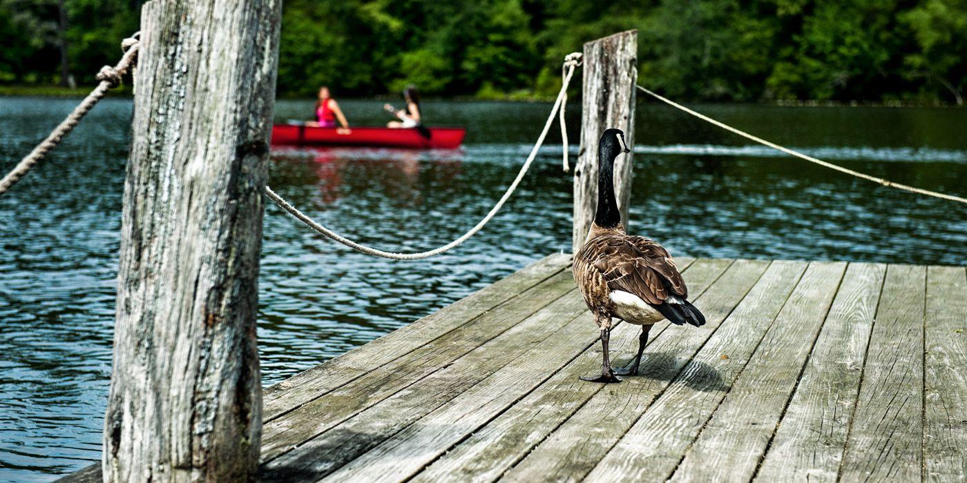 Home Highland Lake Inn & Resort in by