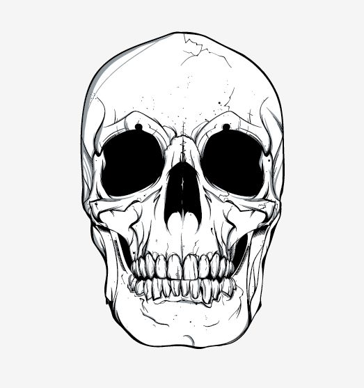 skull vector free vector site download free vector art graphics rh pinterest com sugar skull vector art skull clip art vector