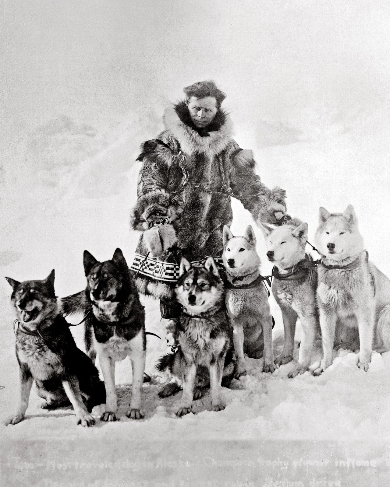 Leonhard Seppala And His Huskies X Dog Sledding Siberian Dog