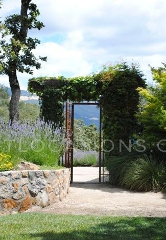 Monte Vigna  Mint Locations