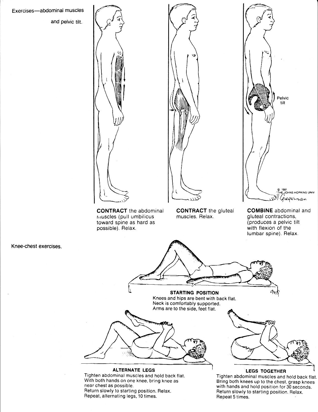 Exercise For Back Muscles