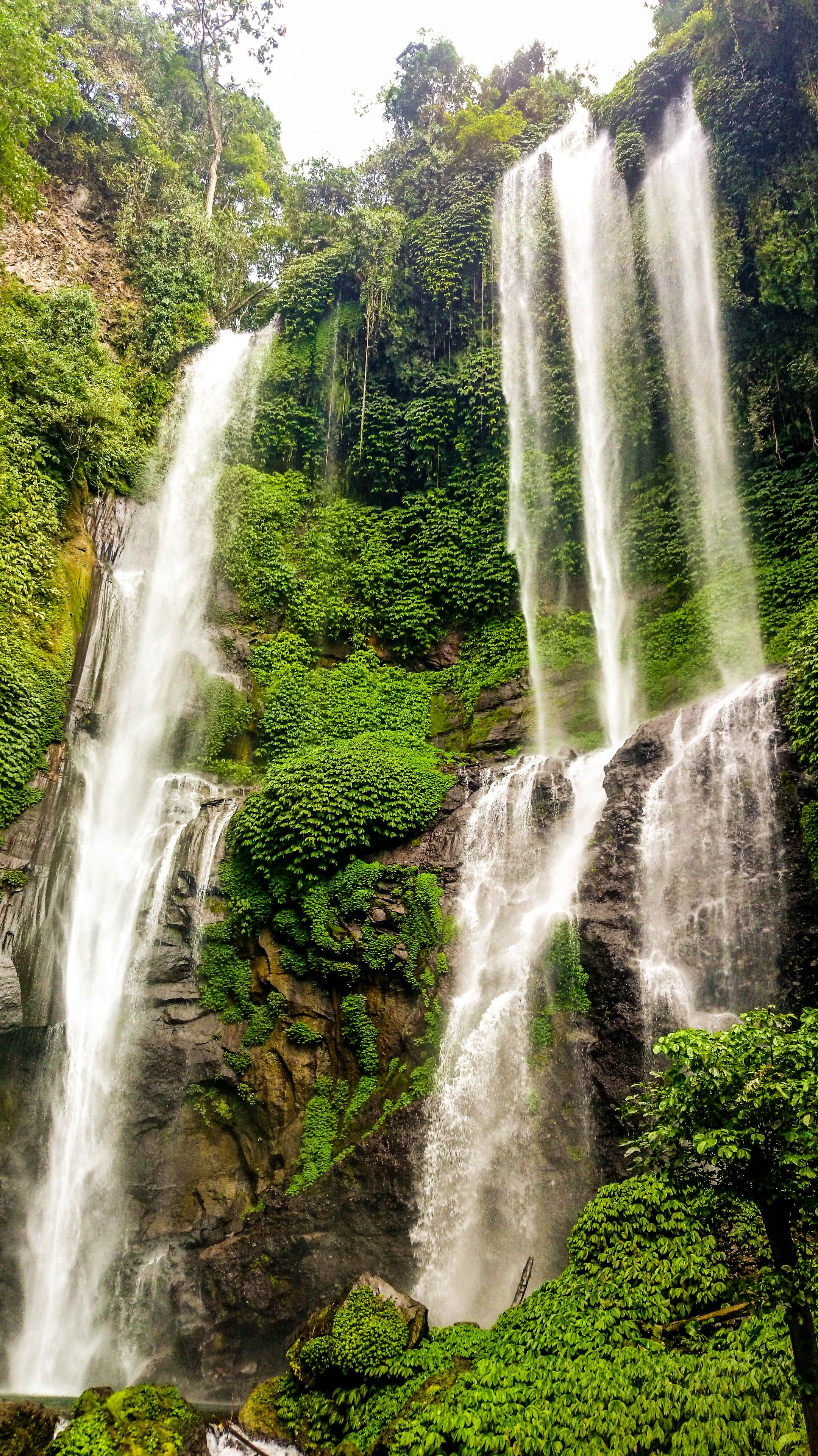 """Sekumpul Waterfall, Bali. Indonesia. While Gitgit is the most visited waterfall in Bali and Aling-Aling is the most fun waterfall, the Sekumpul waterfalls are often considered the most beautiful in Bali. Sekumpul means """"a group of"""", and there are 7 waterfalls here on the north side of Bali (further east of Lovina) that you can view. The drive is long and it takes a whole day, but you'll barely meet other visitors there and the pure serenity that awaits you is unforgettable!"""