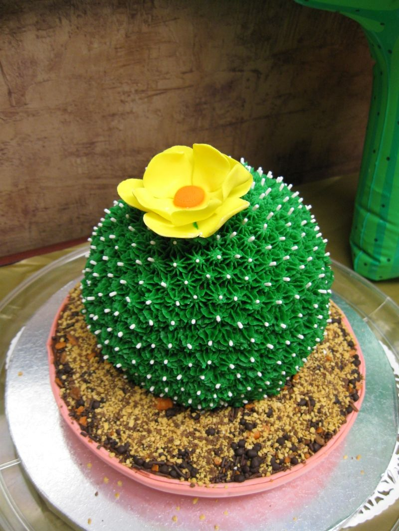 I Love These Cactus Cakes Or Cactii Cakes Cakes