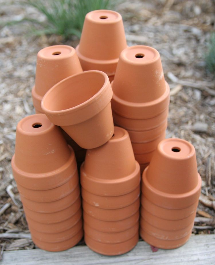 Bulk Lot 50 2 Inch Small Clay Flower Pots Garden Craft Wedding Favor Baby Clay Flower Pots Small Flower Pots Flower Pots