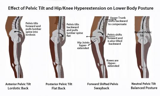 29+ Tightness in back of knee trends