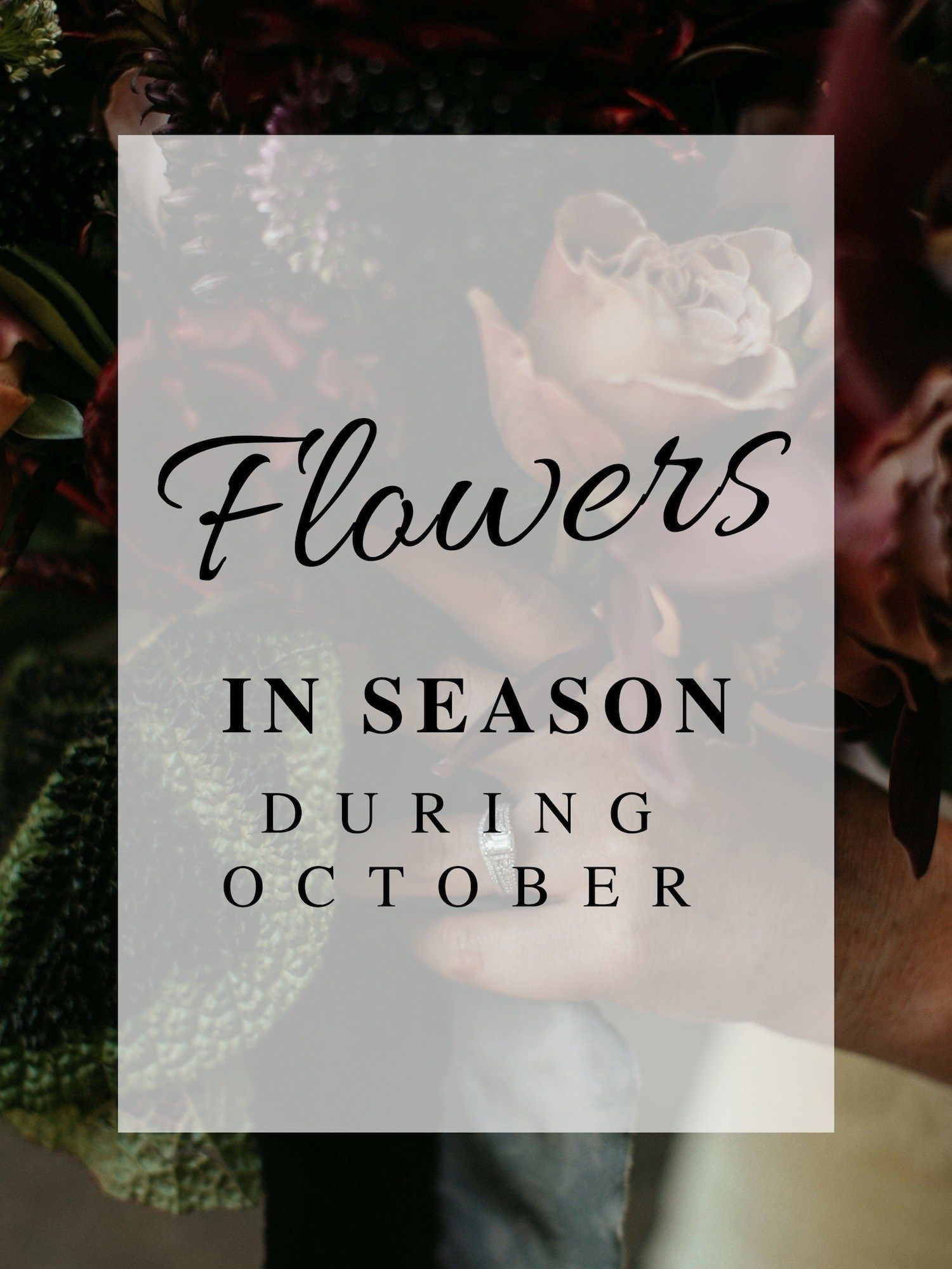 Having a wedding in October and want to have inseason flowers for