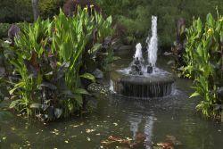 Voda v gibanju   Vrt in okolica SLONEP