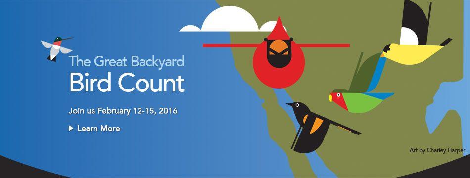Great Backyard Bird Count (Day 45)   Great backyard bird ...