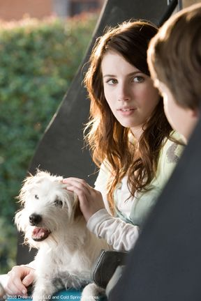"""Friday in """"Hotel for Dogs"""" 