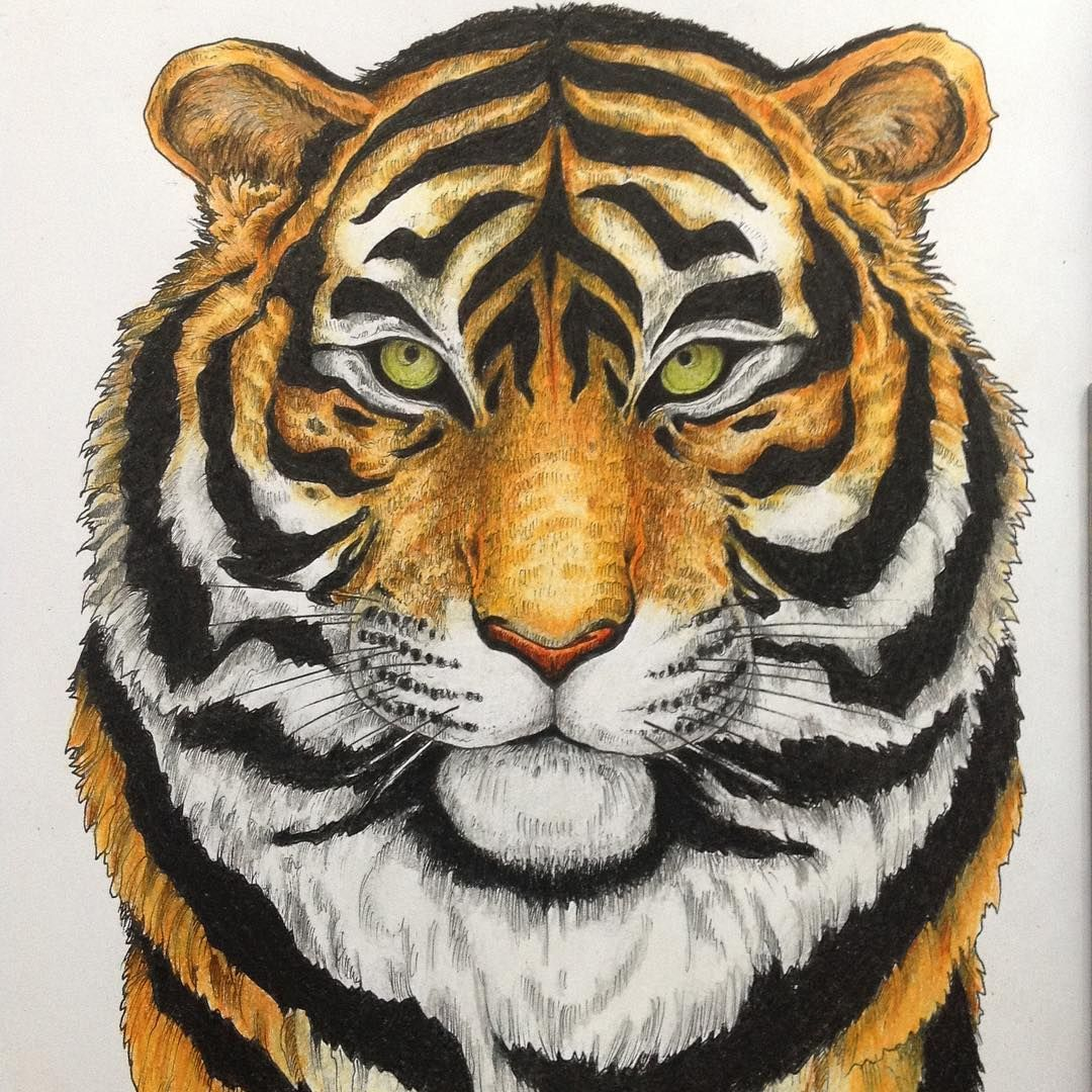 imagimorphia #kerbyrosanes #adultcoloringbook #tiger   Kerby Rosanes ...