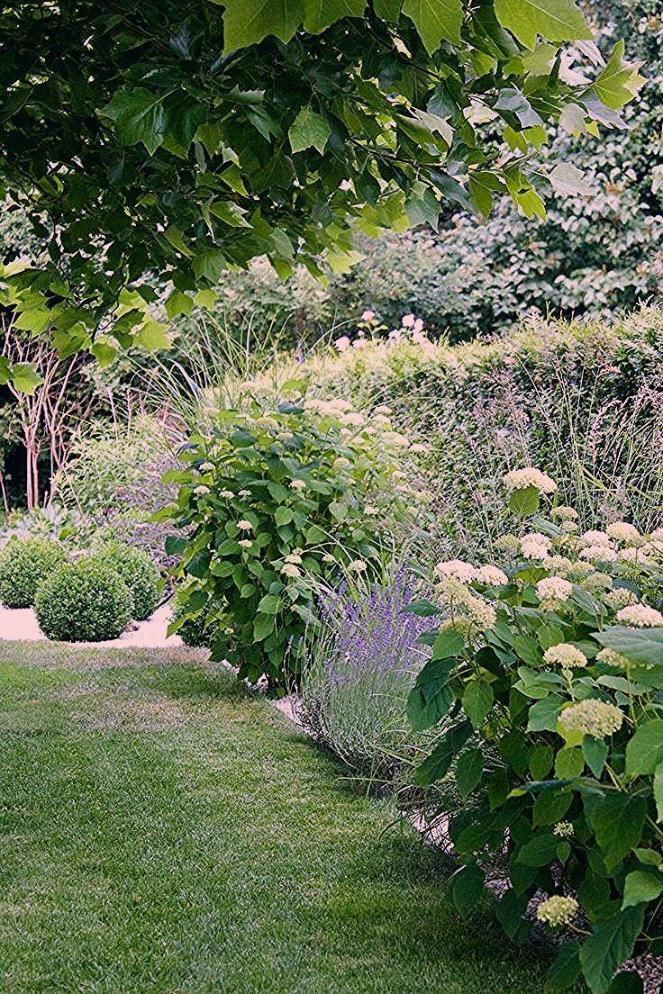 Photo of dieartigeGARTEN – Sommergarten mit Buchs, Ballhortensien, Lavendel, Gräsern – Pflanzen ideen