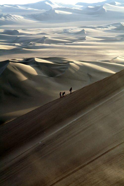 Desert. Looks like a great adventure